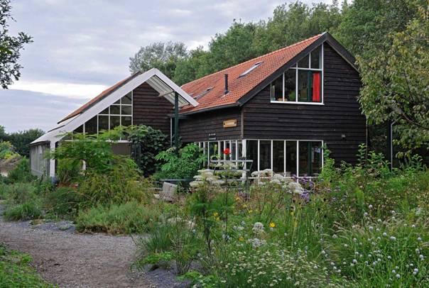 pflanzen kaufen in holland